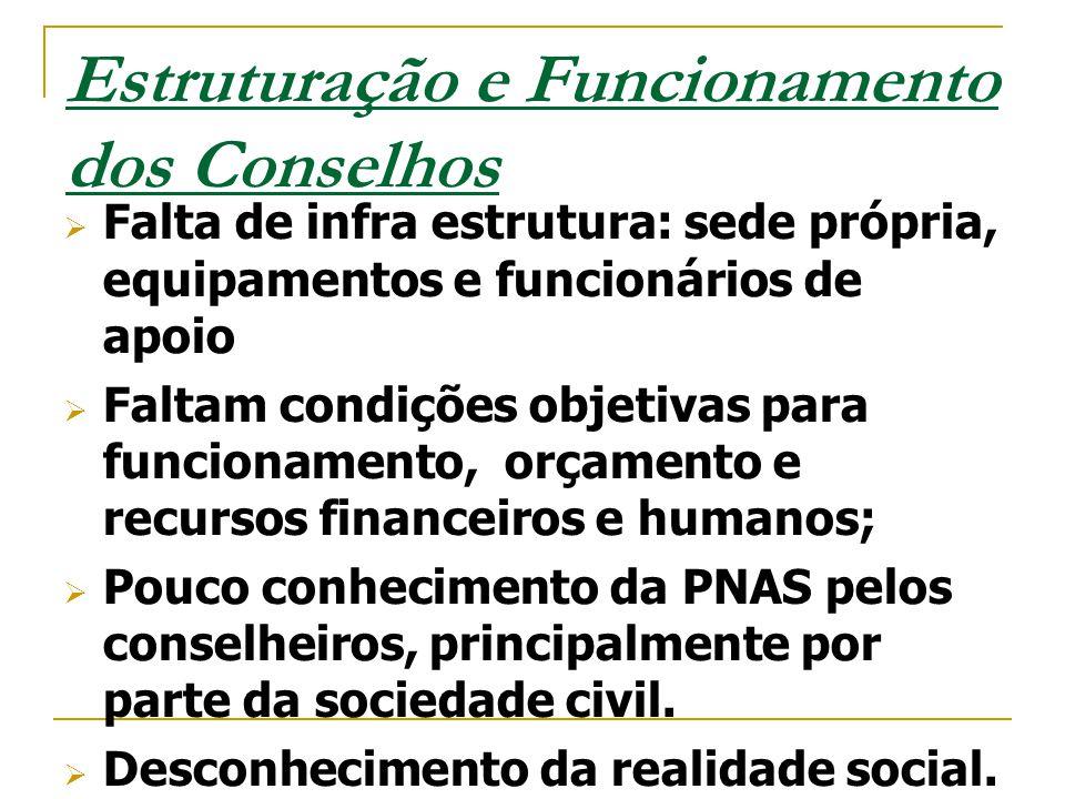 Estruturação e Funcionamento dos Conselhos
