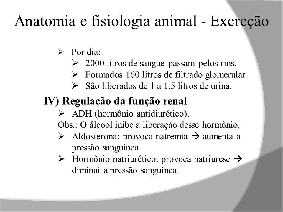 Anatomia e fisiologia animal - Excreção