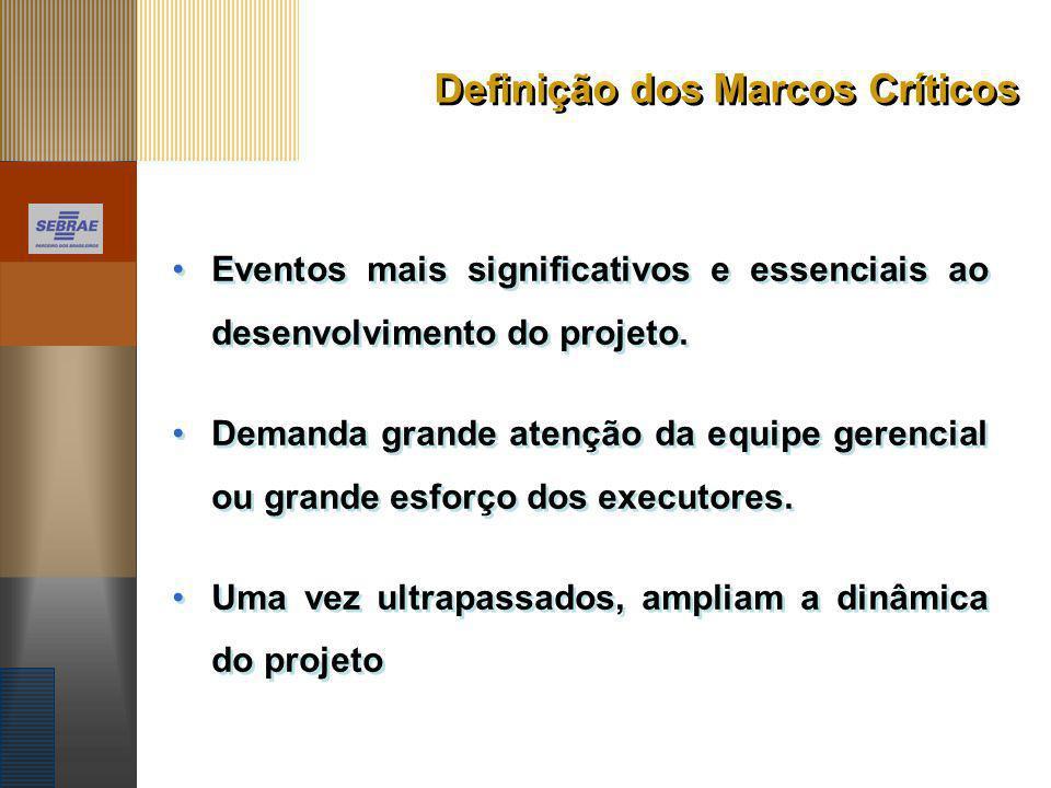 Definição dos Marcos Críticos