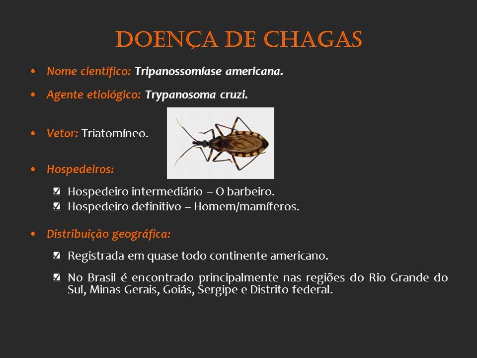 Doença de Chagas Nome científico: Tripanossomíase americana.