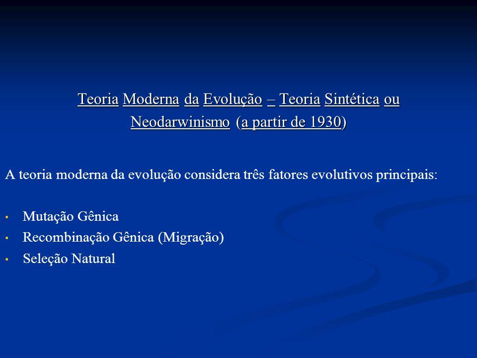 Teoria Moderna da Evolução – Teoria Sintética ou