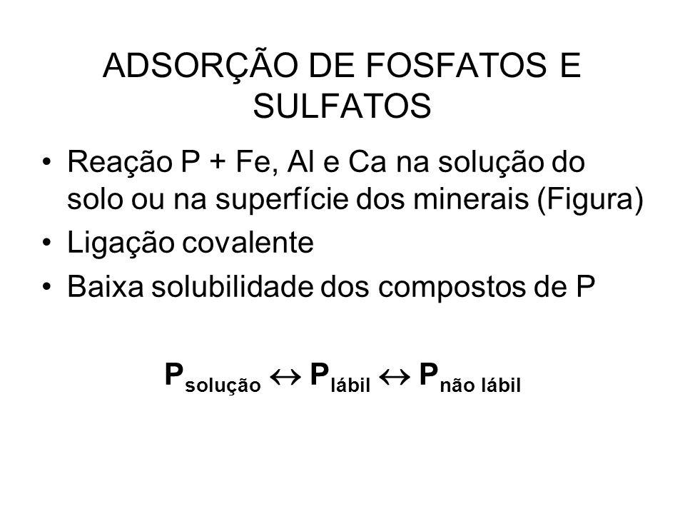 ADSORÇÃO DE FOSFATOS E SULFATOS