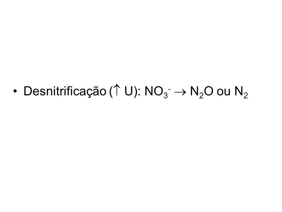 Desnitrificação ( U): NO3-  N2O ou N2