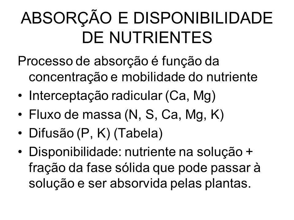 ABSORÇÃO E DISPONIBILIDADE DE NUTRIENTES