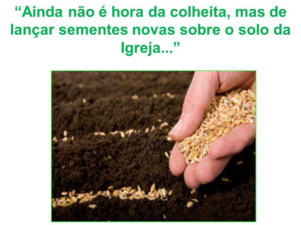 Ainda não é hora da colheita, mas de lançar sementes novas sobre o solo da Igreja...
