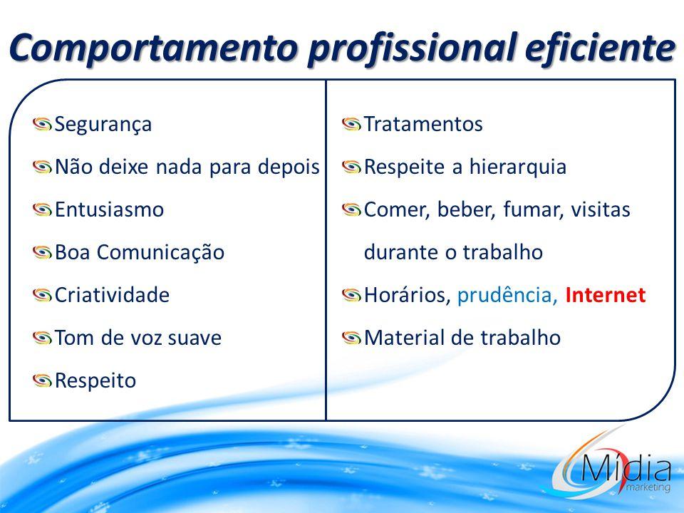 Comportamento profissional eficiente