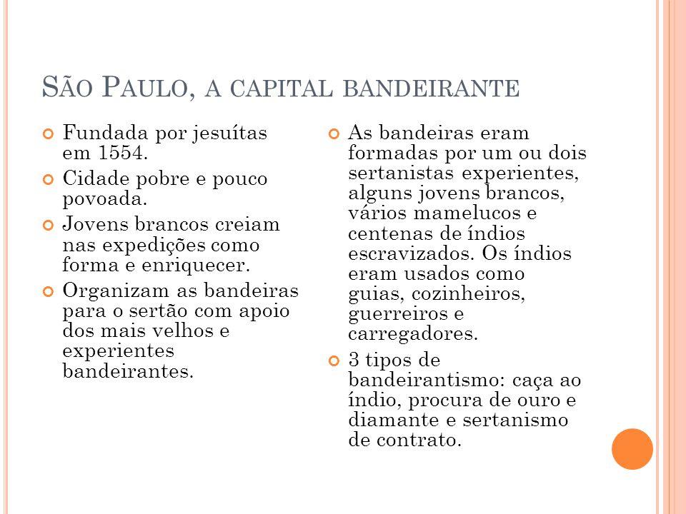 São Paulo, a capital bandeirante