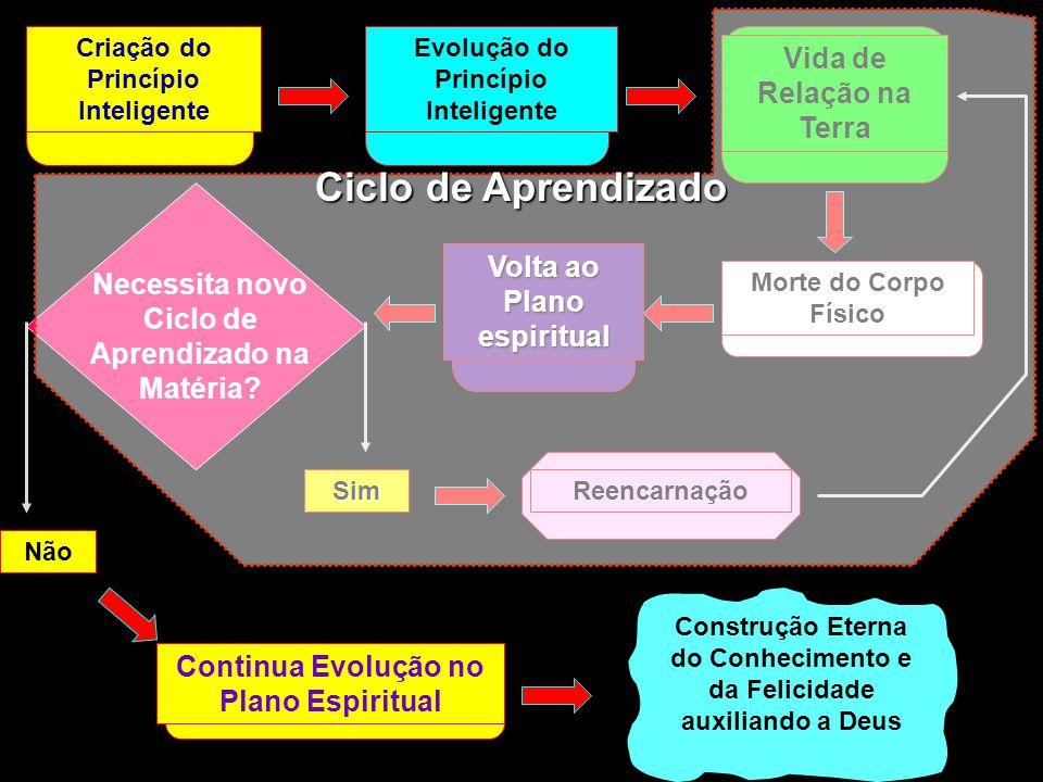 Ciclo de Aprendizado Vida de Relação na Terra