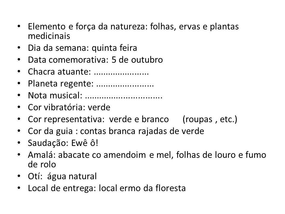 Elemento e força da natureza: folhas, ervas e plantas medicinais