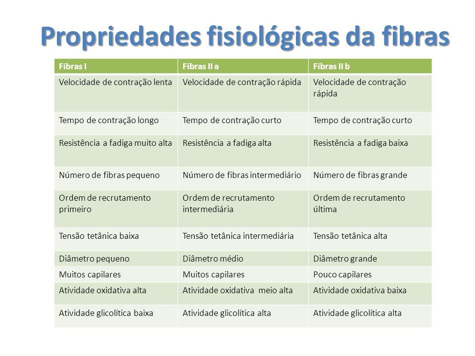 Propriedades fisiológicas da fibras