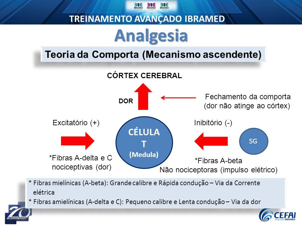 Teoria da Comporta (Mecanismo ascendente)