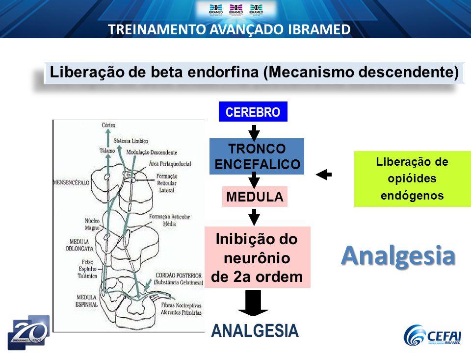 Liberação de beta endorfina (Mecanismo descendente)