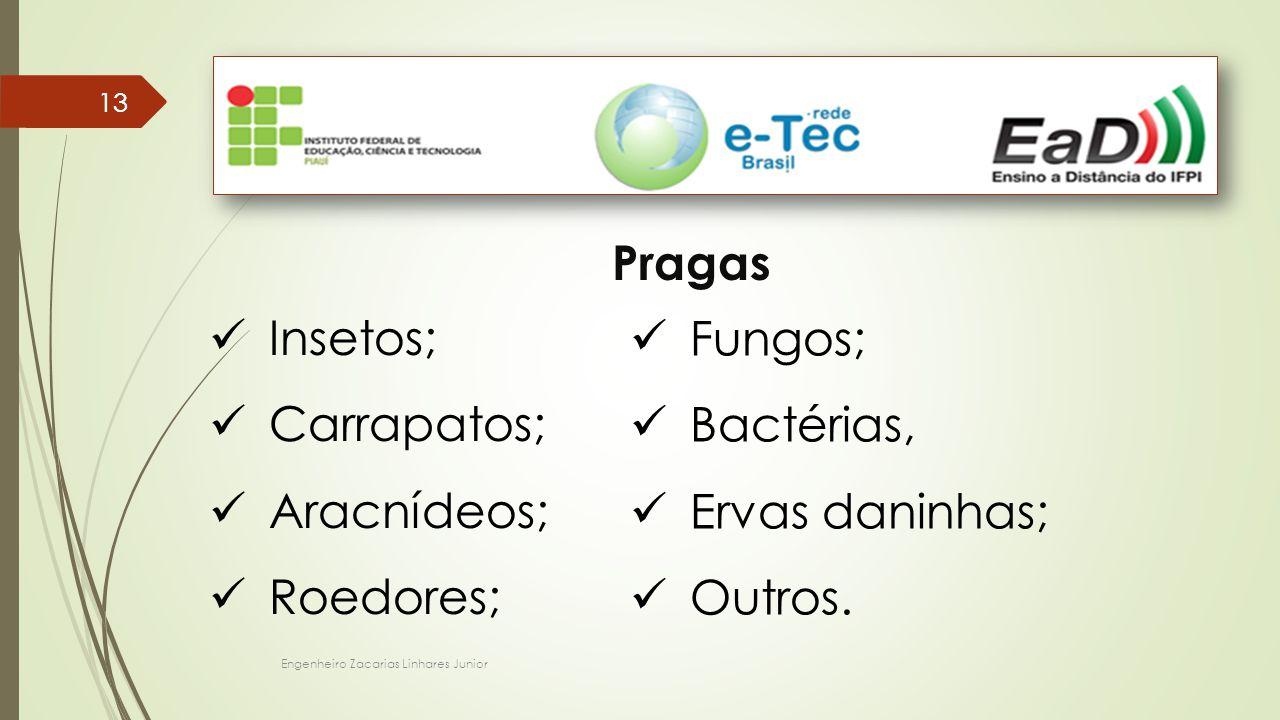 Pragas Insetos; Fungos; Carrapatos; Bactérias, Aracnídeos;