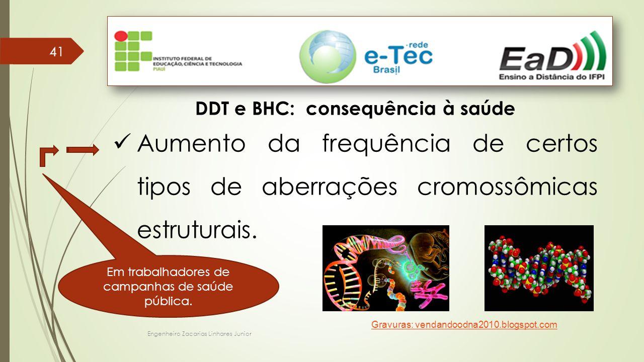 DDT e BHC: consequência à saúde