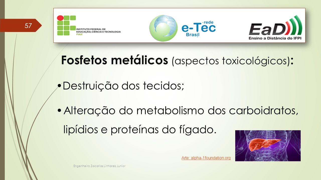 Fosfetos metálicos (aspectos toxicológicos):