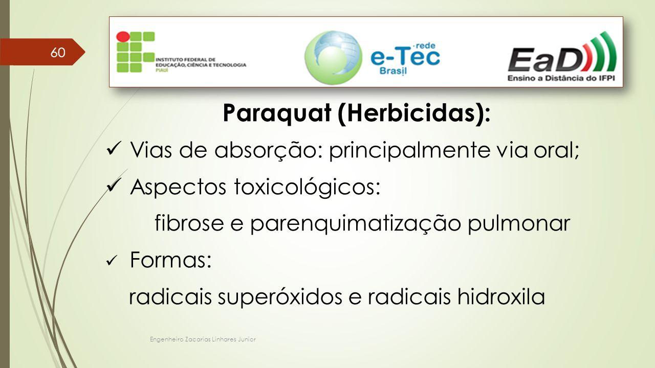 Paraquat (Herbicidas):