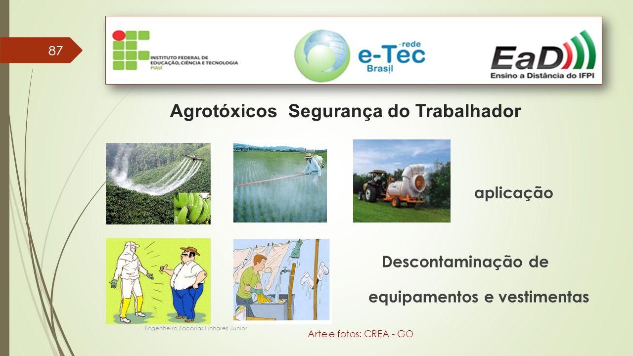 Agrotóxicos Segurança do Trabalhador