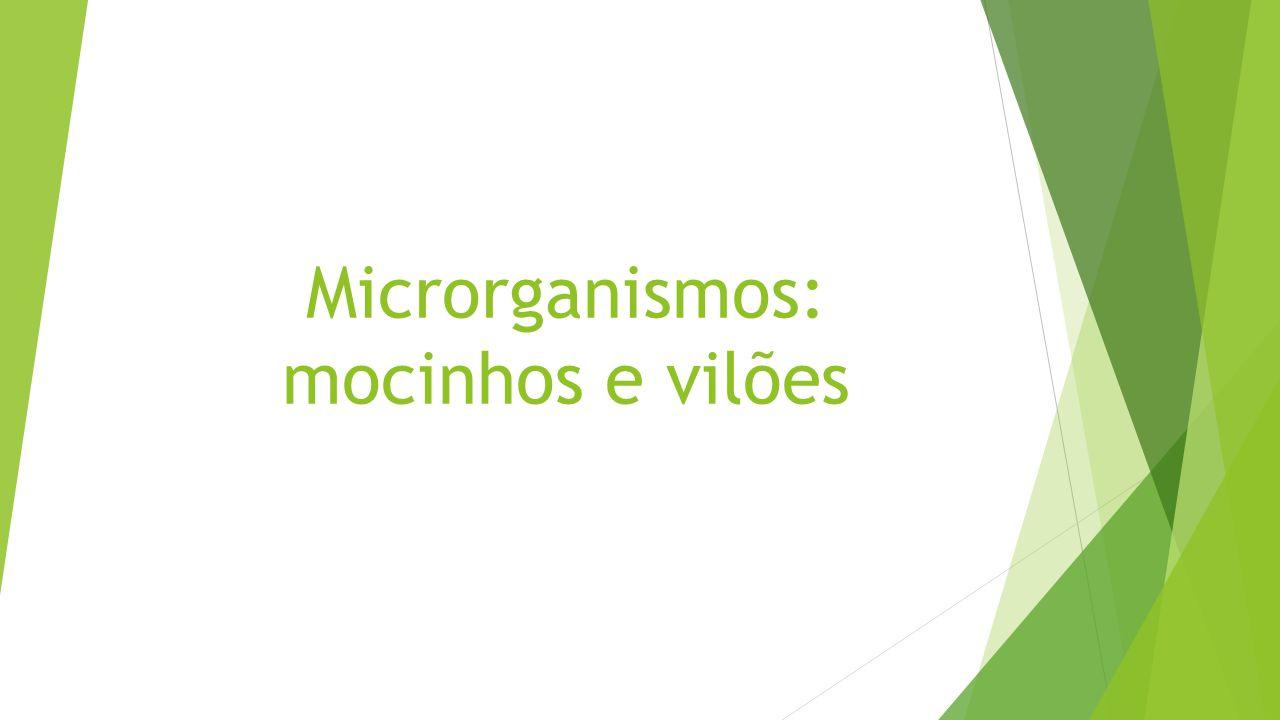 Microrganismos: mocinhos e vilões