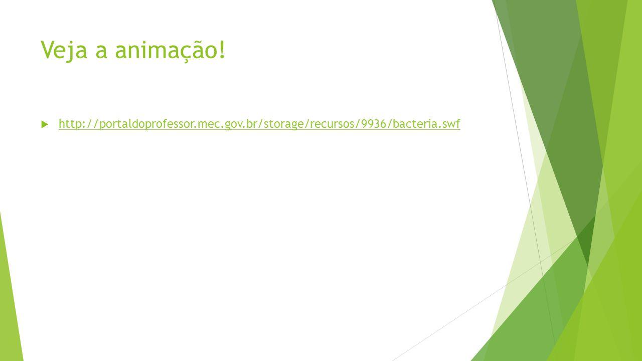 Veja a animação! http://portaldoprofessor.mec.gov.br/storage/recursos/9936/bacteria.swf