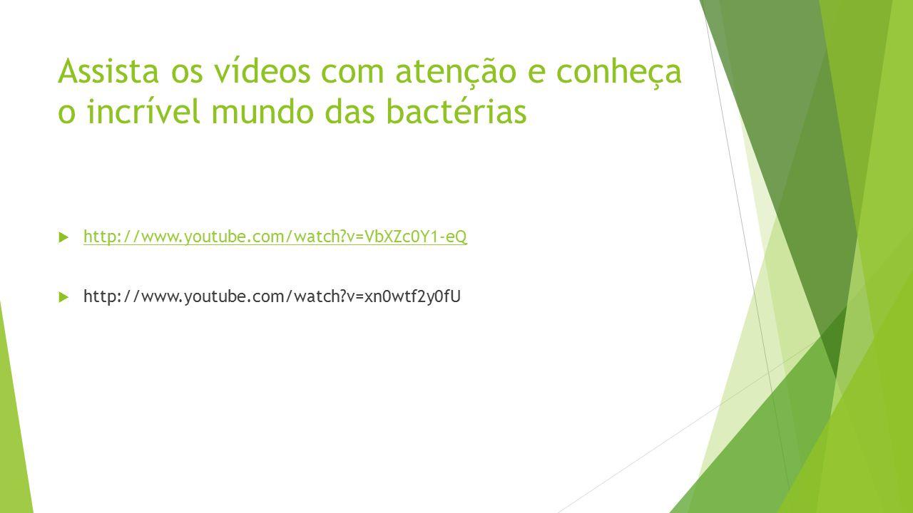 Assista os vídeos com atenção e conheça o incrível mundo das bactérias