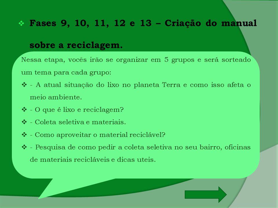 Fases 9, 10, 11, 12 e 13 – Criação do manual sobre a reciclagem.
