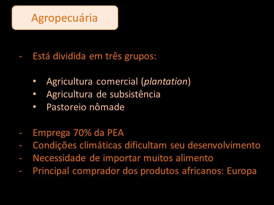 Agropecuária Está dividida em três grupos: