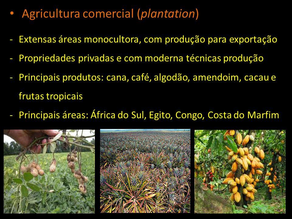 Agricultura comercial (plantation)