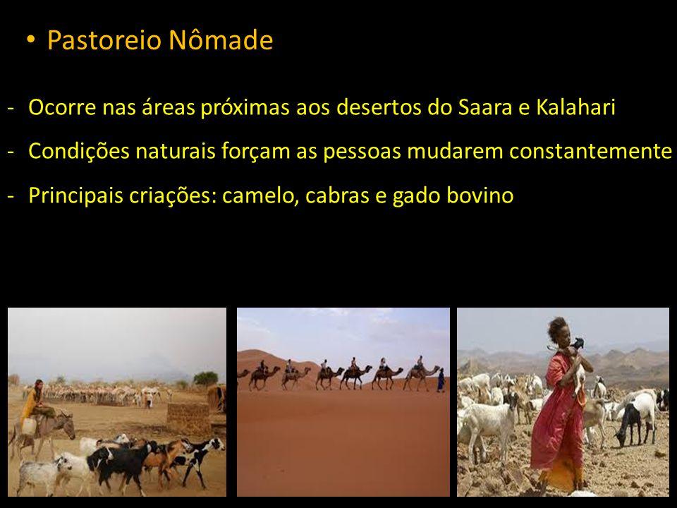 Pastoreio Nômade Ocorre nas áreas próximas aos desertos do Saara e Kalahari. Condições naturais forçam as pessoas mudarem constantemente.