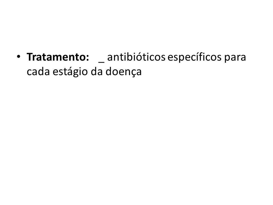 Tratamento: _ antibióticos específicos para cada estágio da doença