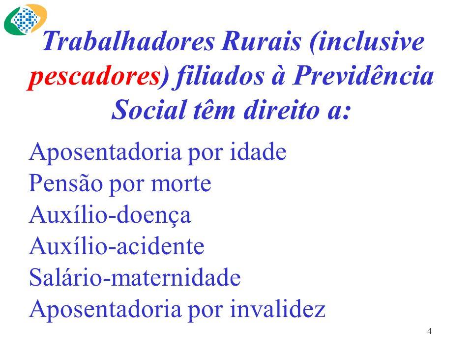 Trabalhadores Rurais (inclusive pescadores) filiados à Previdência Social têm direito a: