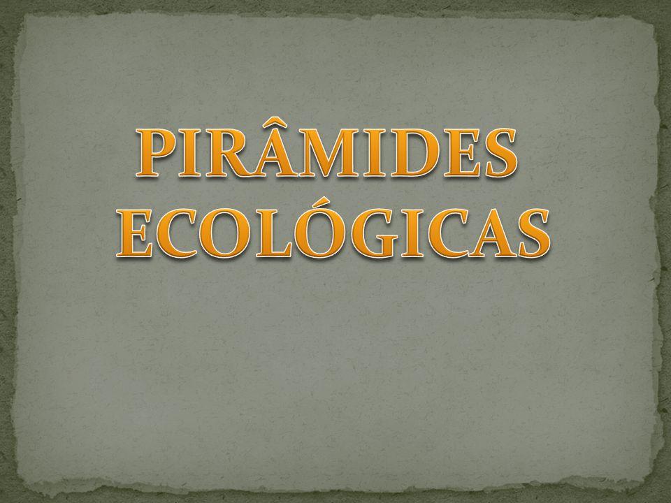 PIRÂMIDES ECOLÓGICAS