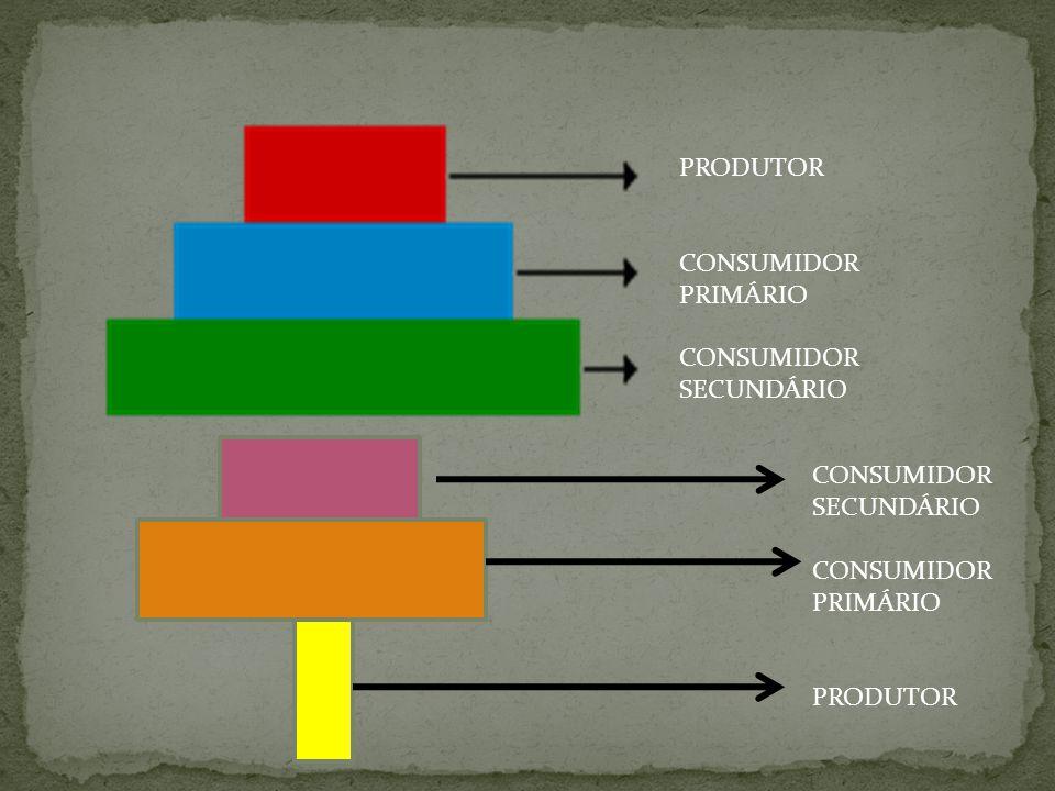 PRODUTOR CONSUMIDOR PRIMÁRIO SECUNDÁRIO CONSUMIDOR SECUNDÁRIO PRIMÁRIO PRODUTOR
