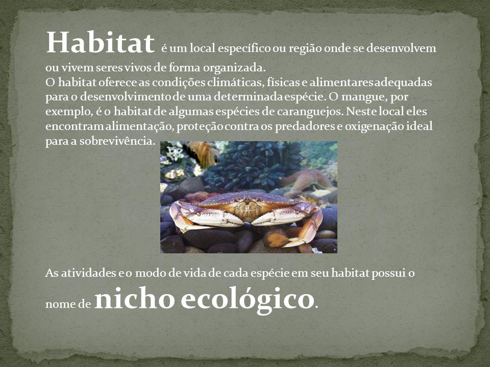Habitat é um local específico ou região onde se desenvolvem ou vivem seres vivos de forma organizada.