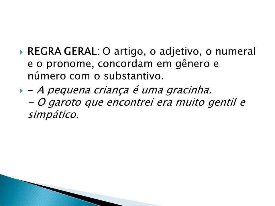 REGRA GERAL: O artigo, o adjetivo, o numeral e o pronome, concordam em gênero e número com o substantivo.