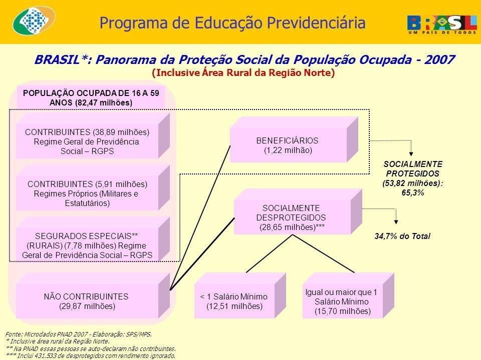 BRASIL*: Panorama da Proteção Social da População Ocupada - 2007