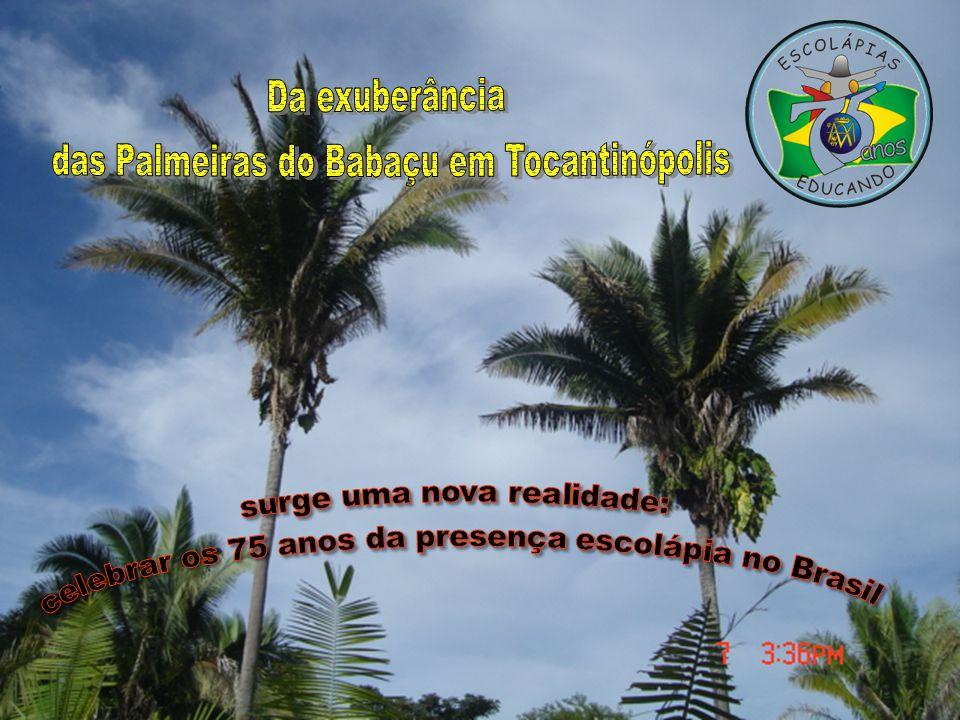 das Palmeiras do Babaçu em Tocantinópolis