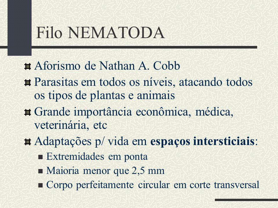 Filo NEMATODA Aforismo de Nathan A. Cobb