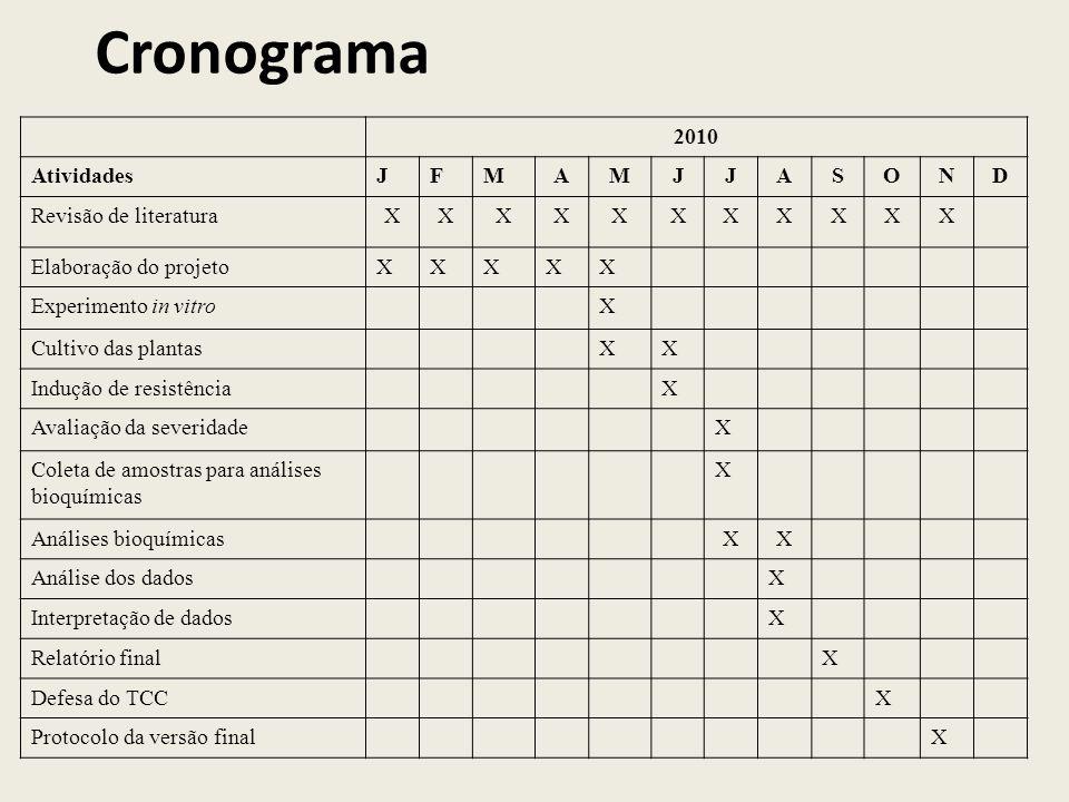 Cronograma 2010 Atividades J F M A S O N D Revisão de literatura X