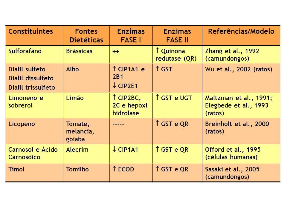 Fontes Dietéticas Enzimas FASE I Enzimas FASE II Referências/Modelo