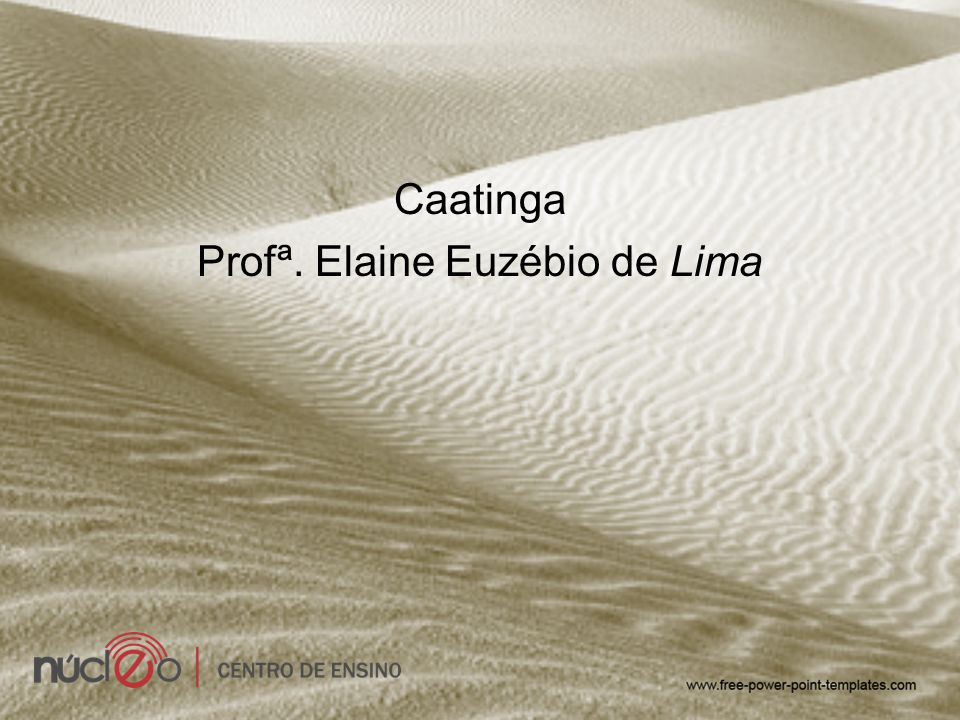 Profª. Elaine Euzébio de Lima