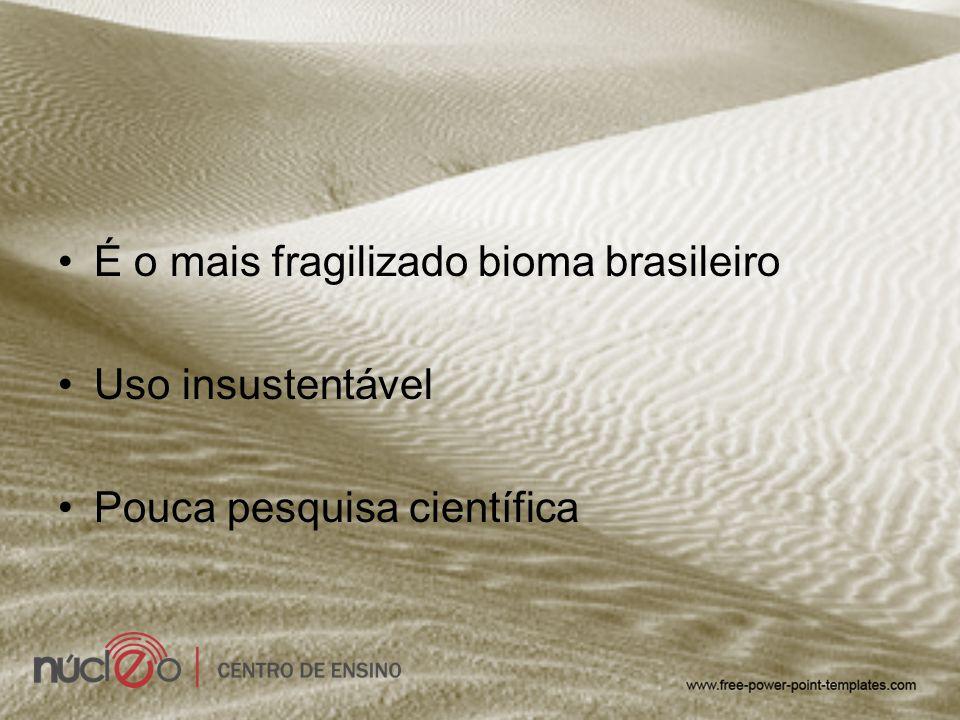 É o mais fragilizado bioma brasileiro