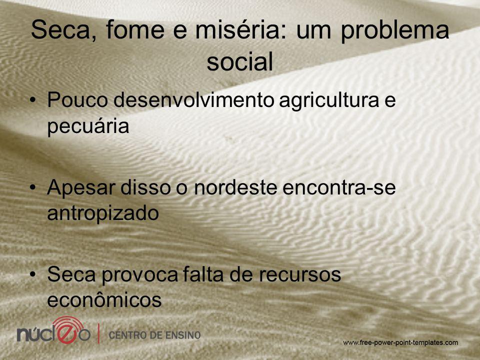 Seca, fome e miséria: um problema social