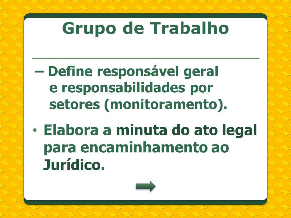 Grupo de Trabalho– Define responsável geral e responsabilidades por setores (monitoramento).