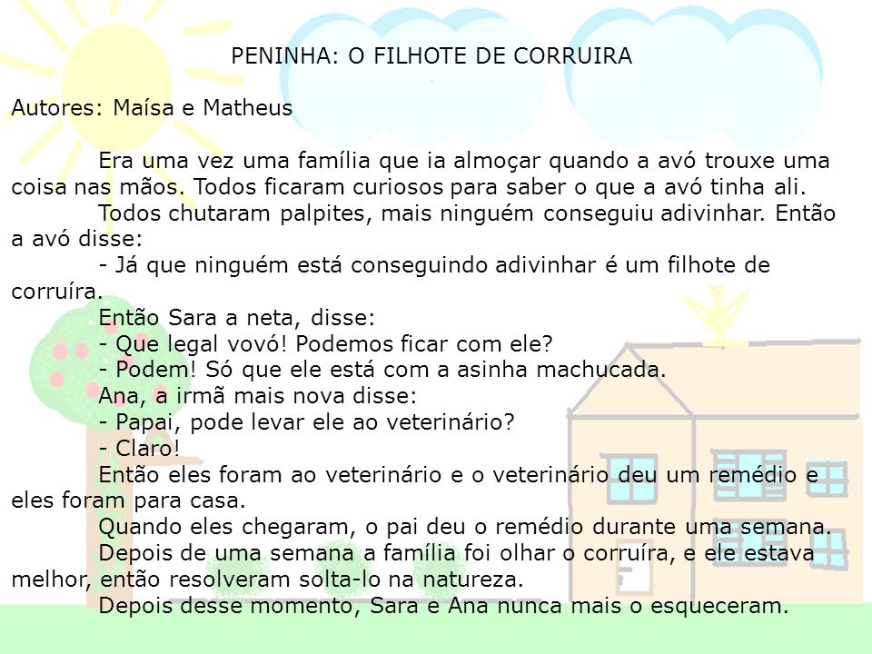 PENINHA: O FILHOTE DE CORRUIRA