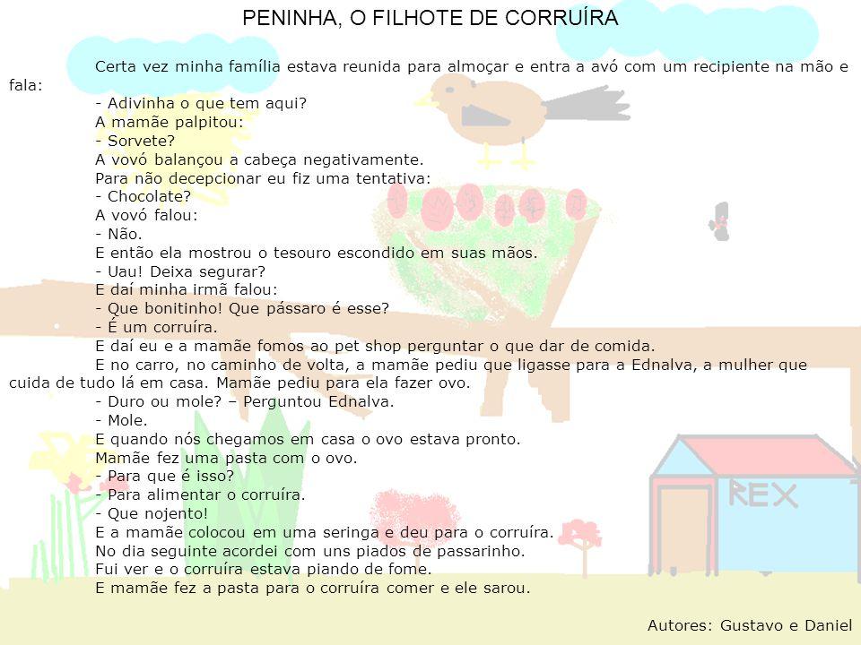 PENINHA, O FILHOTE DE CORRUÍRA