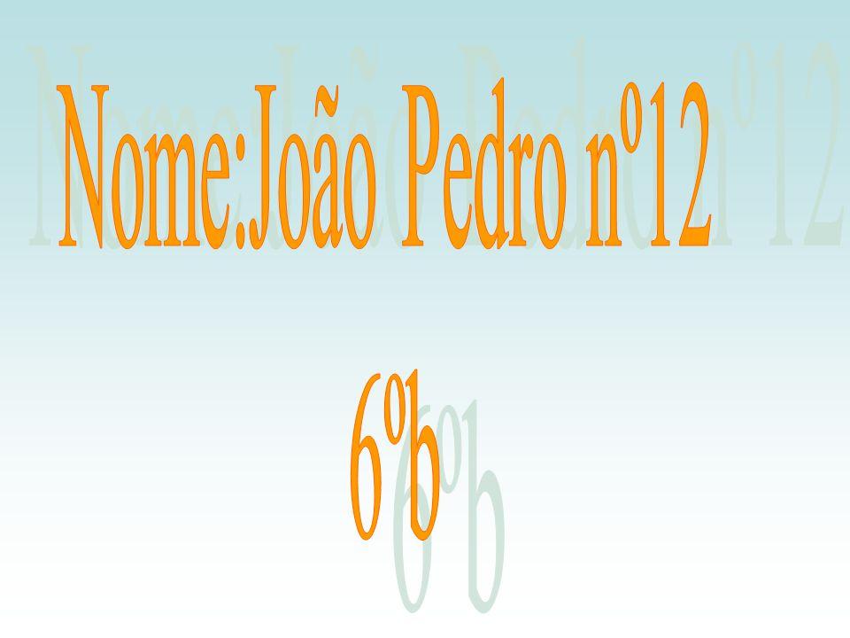 Nome:João Pedro nº12 6ºb