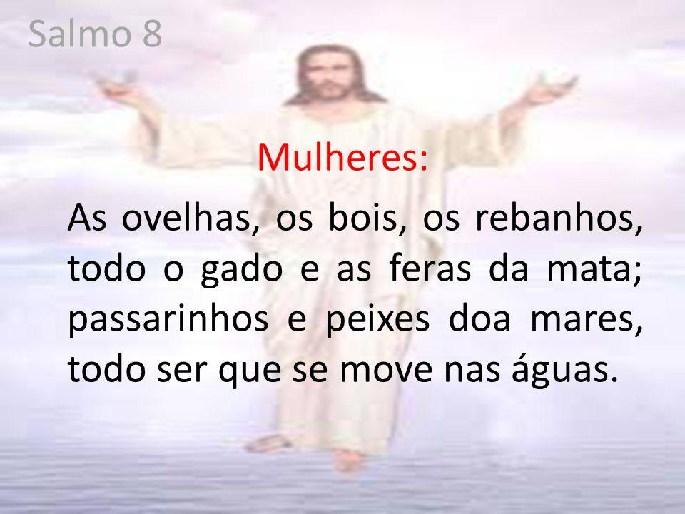 Salmo 8 Mulheres: As ovelhas, os bois, os rebanhos, todo o gado e as feras da mata; passarinhos e peixes doa mares, todo ser que se move nas águas.