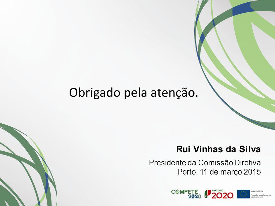 Obrigado pela atenção. Rui Vinhas da Silva