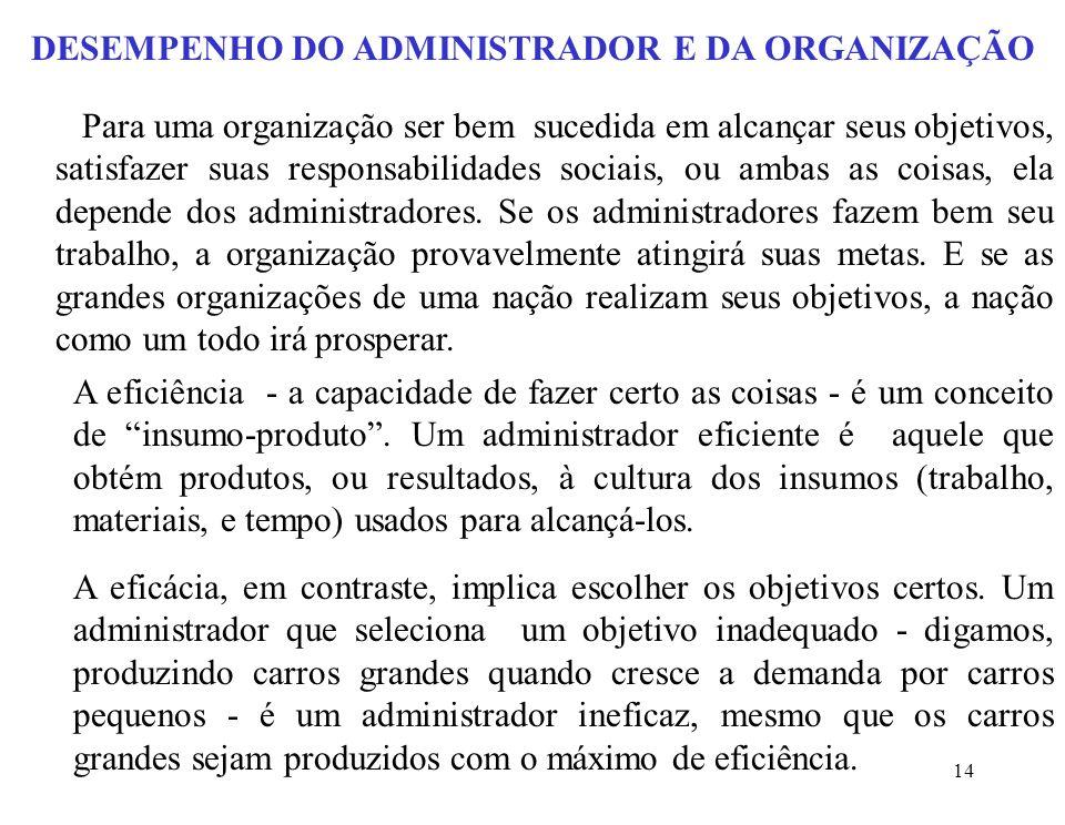 DESEMPENHO DO ADMINISTRADOR E DA ORGANIZAÇÃO