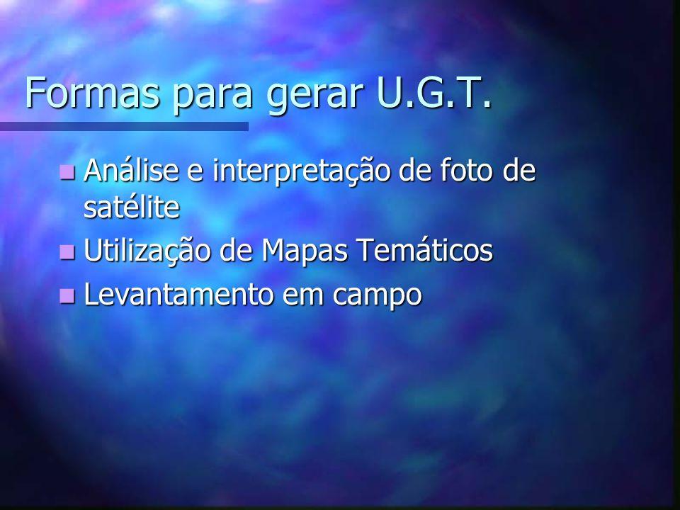 Formas para gerar U.G.T. Análise e interpretação de foto de satélite